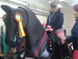 Dressage taster days on the simulator